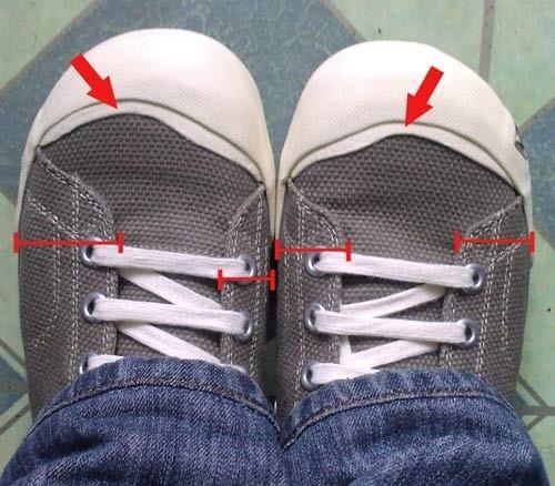 proportions of shoe sucks