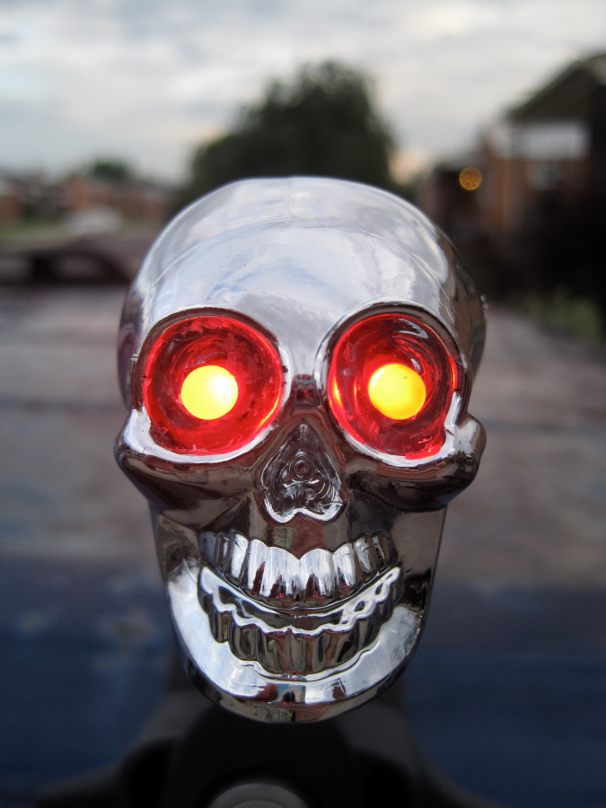 What's better than Yakima Chrome Skulls?