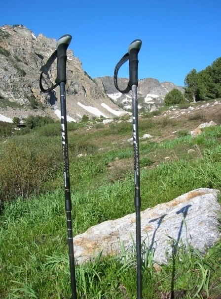 LEKI Carbonlite Aergon Antishock Trekking Poles