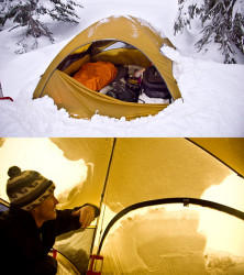 Solid shelter