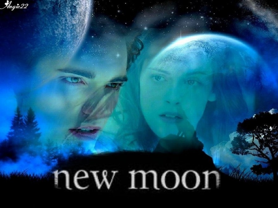 New Moon board