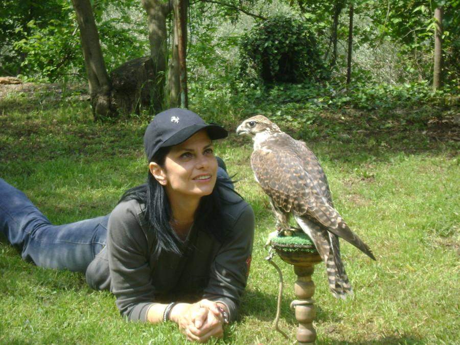 My Falcon Emmanuela