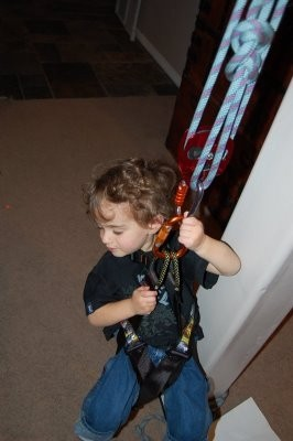 AIden On Harness