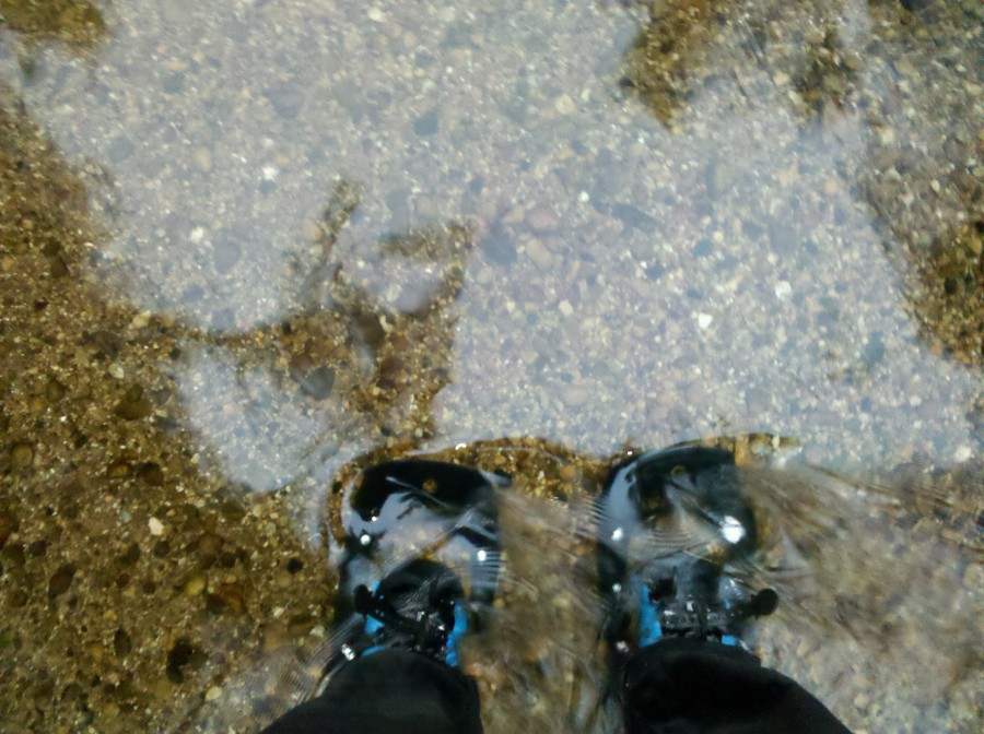 Standing in a river in northern Michigan
