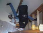snowboard_parakeet