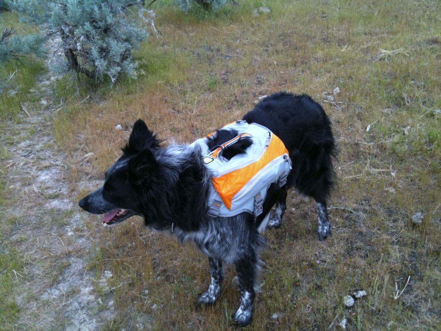 Hailey models her Singletrack Pack