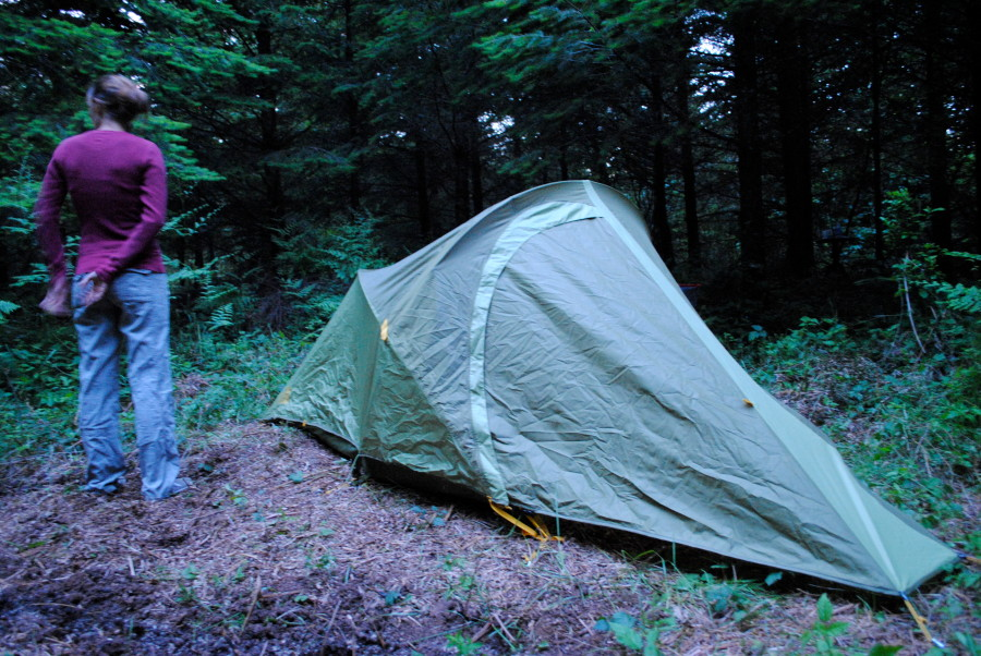 Great introductory backpacking tent.