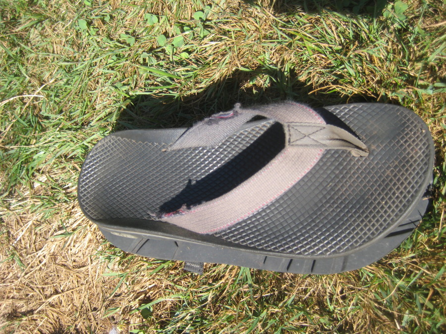 great sandal, slightly narrower than the z1/z2 sandals