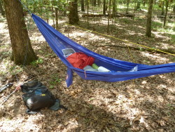 The Grand Trunk UL Hammock
