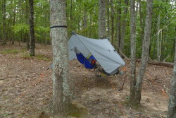 Grand Trunk UL Hammock