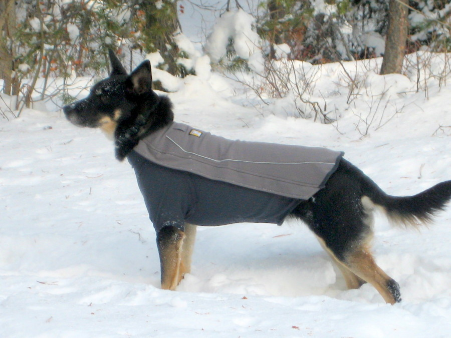 great dog performance clothing but spendy