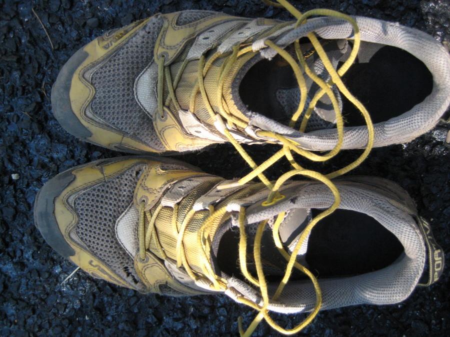 Favorite Hiking Shoe