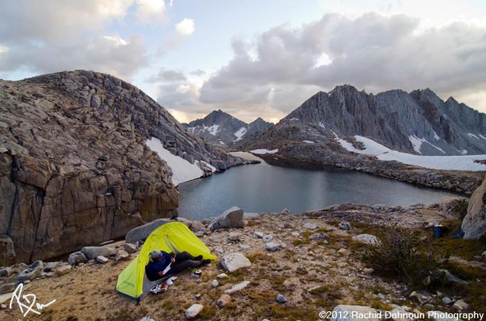 Amazing Shelter