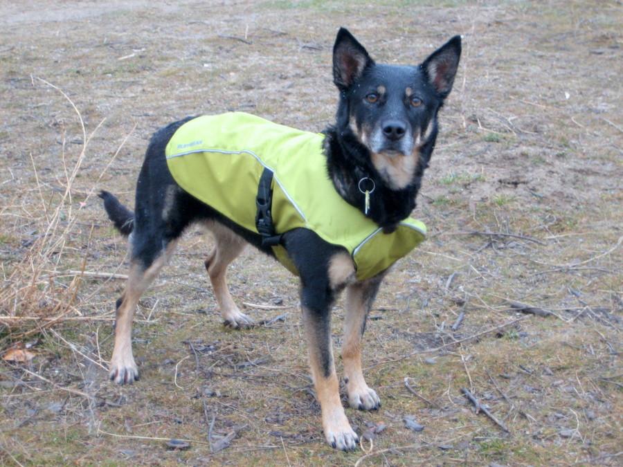 good jacket...