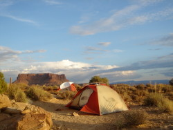 white rim trail!