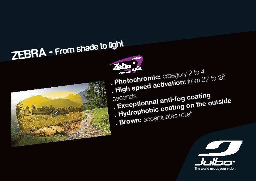 Julbo Zebra Lens Details