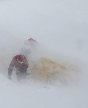 Cold Alpine Action Suit