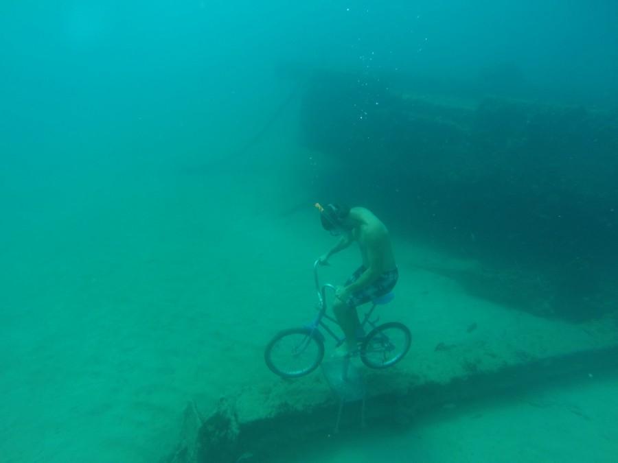 Pretty cool snorkel/freedive shot