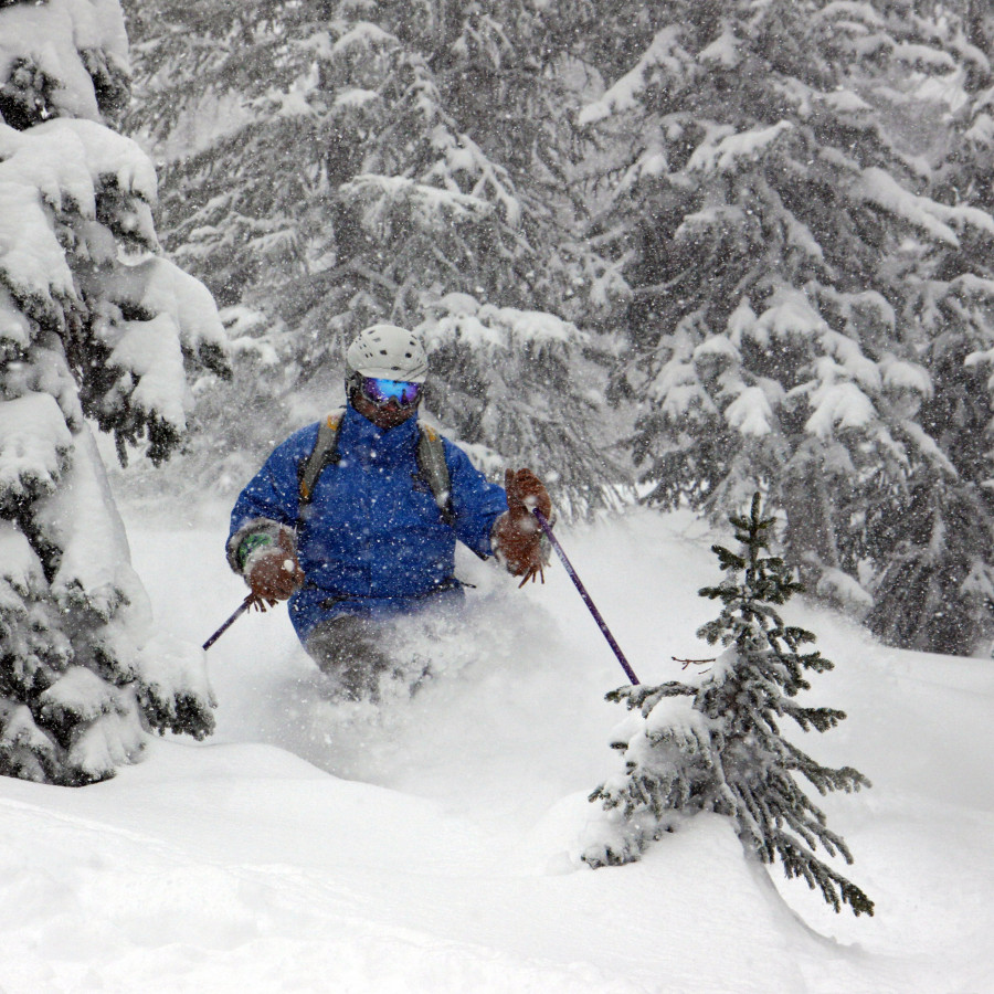 Cat Skiing in Steamboat