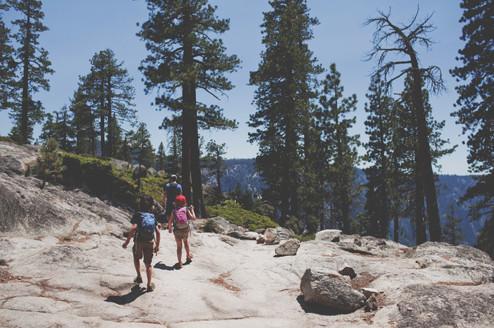 Mini M.U.L.E. at Yosemite Point