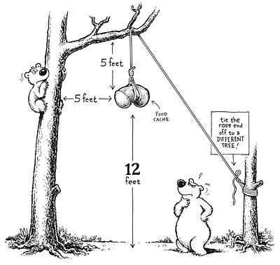 Figure 9 Biner