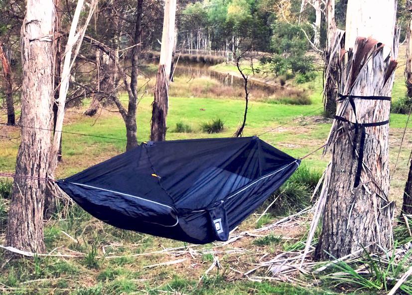 Sky Bed Bug Free in Australian Bush
