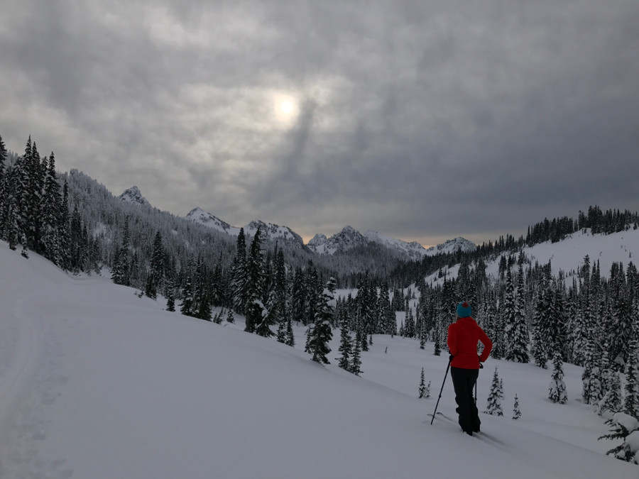 Skiers delight