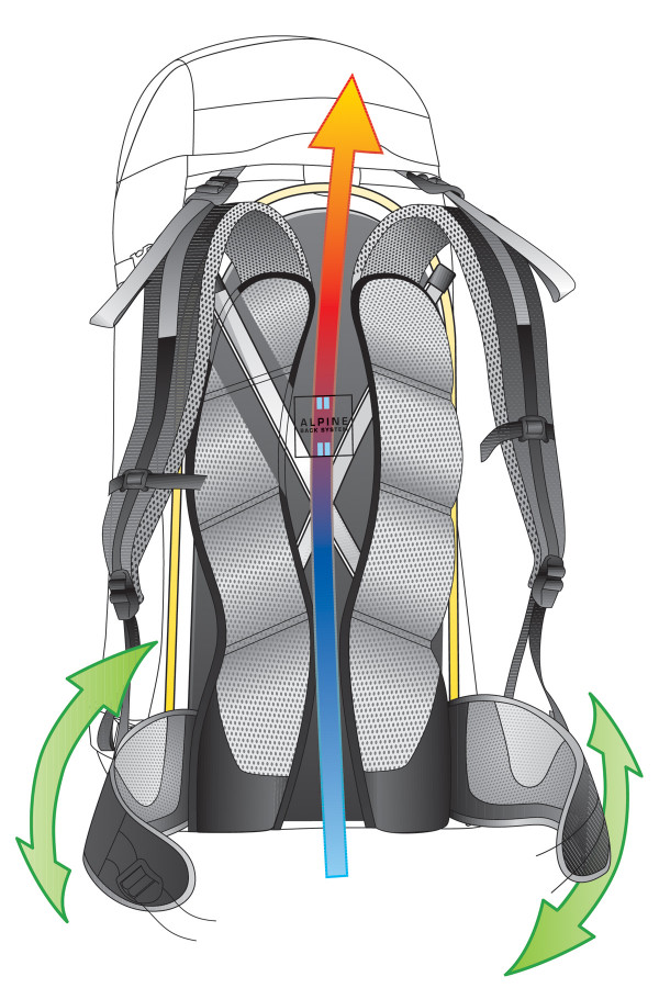 back System <br/>