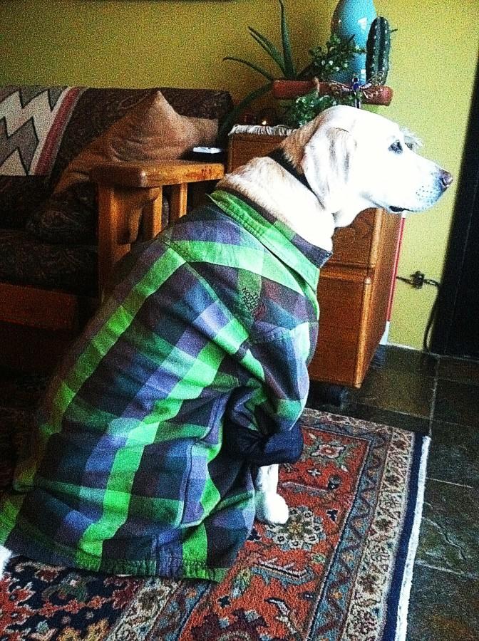 Sweet flannel Jacket