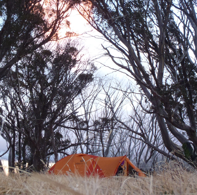 Mt Bogong @ Australia