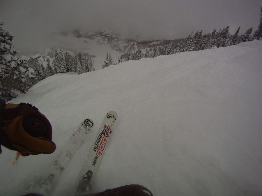 GoPro Chesty mount photo