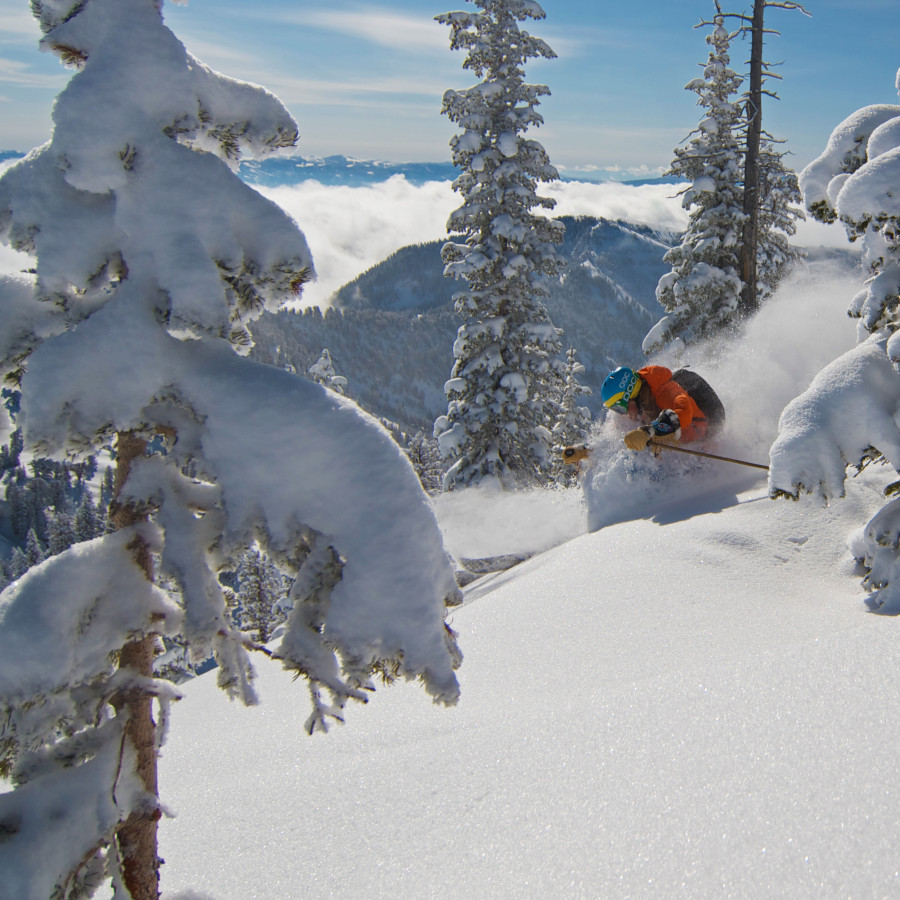 Kaylin Richardson ripping pow