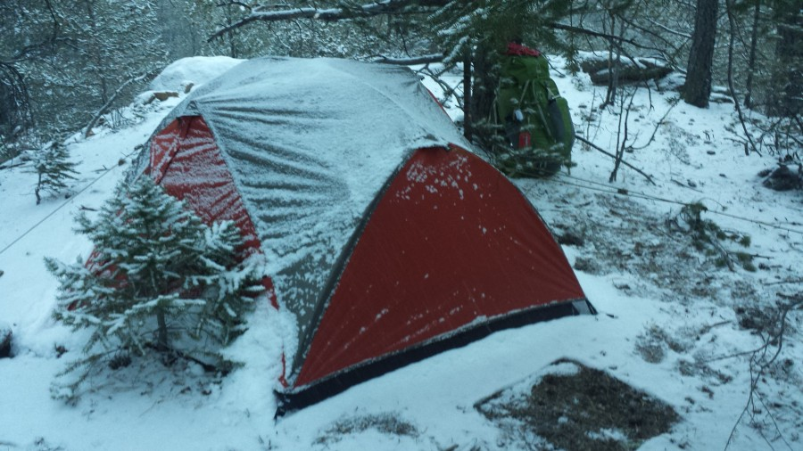 Impressed with materials & ALPS Mountaineering Chaos 2 Tent 2-Person 3-Season | Backcountry.com