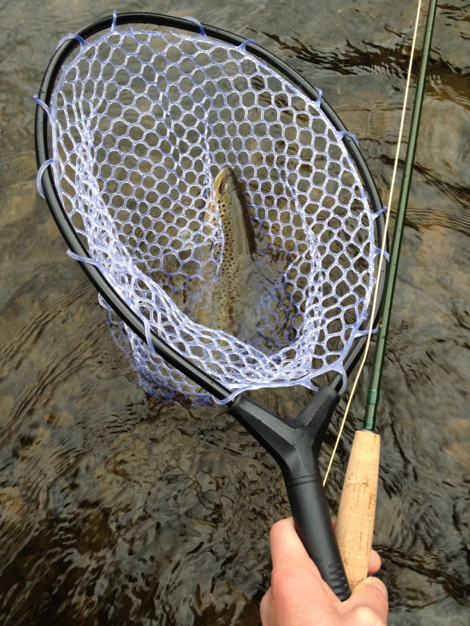 Good size rubber mesh net!