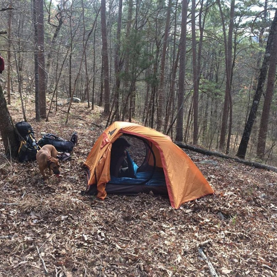 Lightweight for backpacking ... & ALPS Mountaineering Zephyr 2 Tent: 2-Person 3-Season | Steep u0026 Cheap