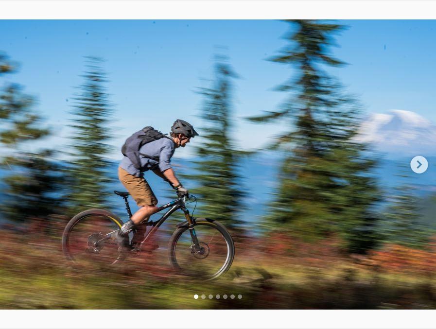07b013d70ec Patagonia Dirt Roamer Bike Short - Men s