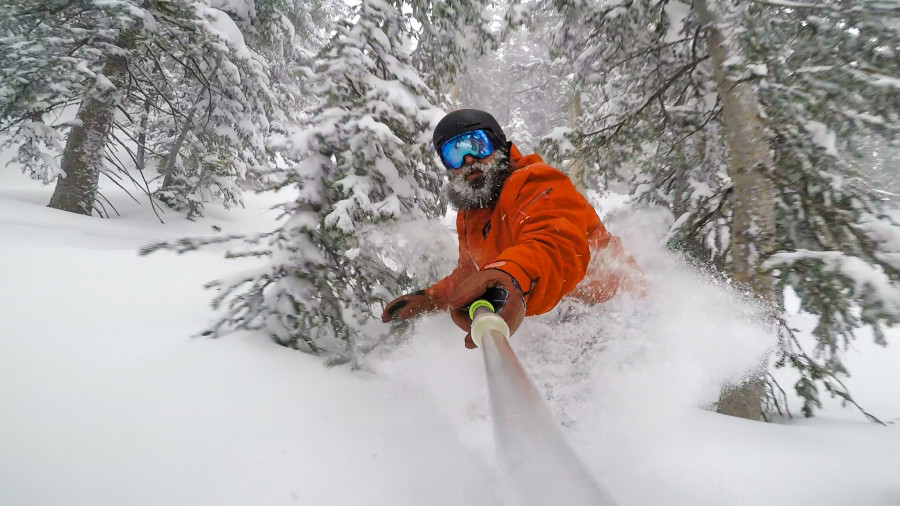 Thrives in the pow
