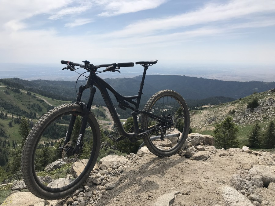 Addix Snakes/Soft 29er 2.35""