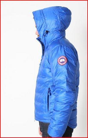canada goose polar bears international lodge hooded down jacket